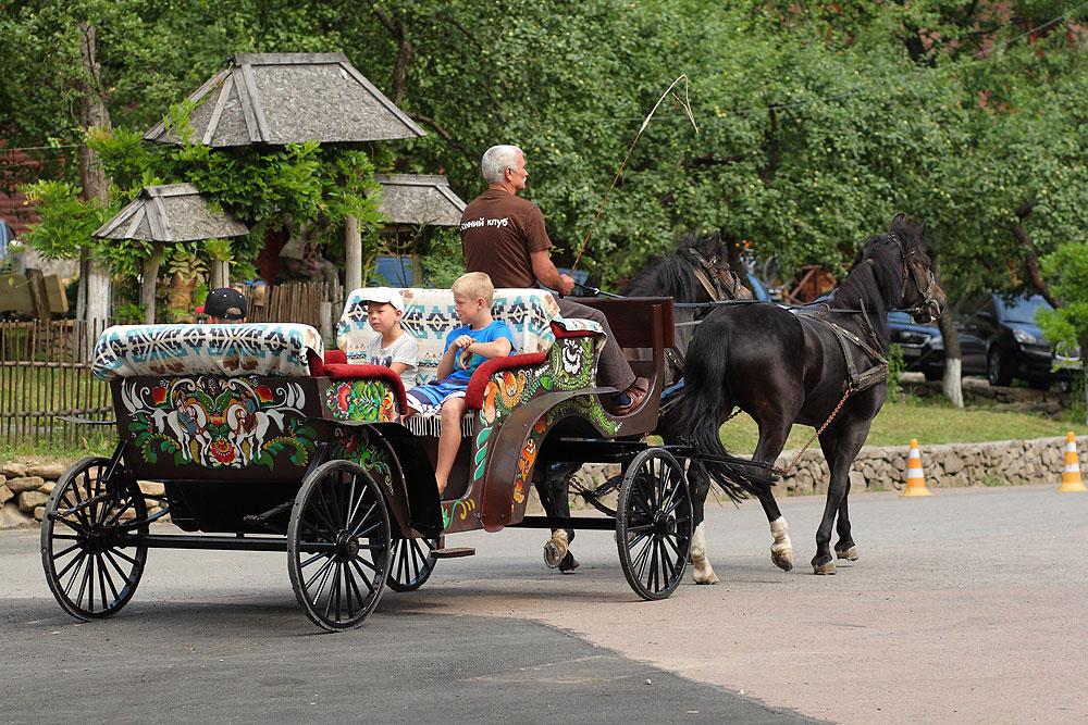 Свято Івана Купала на Закарпатті – ТК Воєводино, фото 21